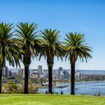 Kings Park - Perth Short Stays - Short Stay Perth, Short Stay Accommodation Perth, Perth Accommodation, Perth Short Stay, Short Term Stay Perth, Short Stays Apartments Perth